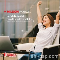 Million Payroll Maxi : LAN Version -(Dongle)