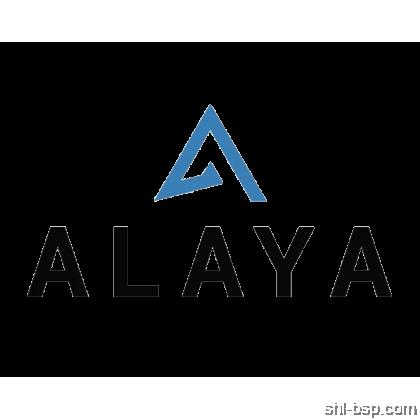 ALAYA CLOUD ACCOUNTING PACKAGE